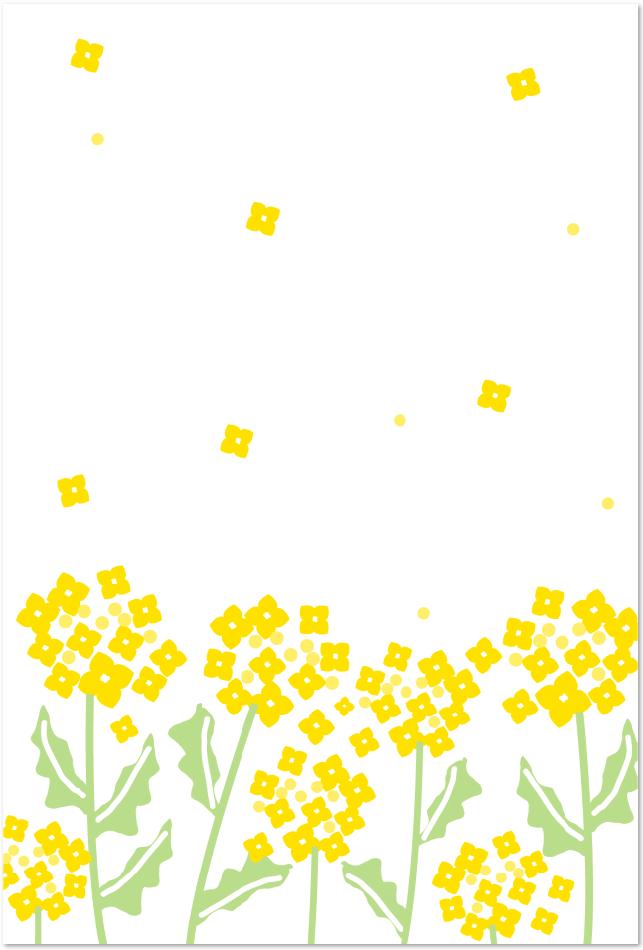 菜の花のはがきテンプレート素材をダウンロード