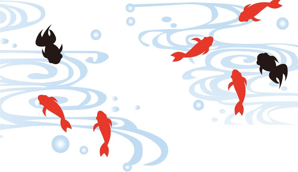 涼しげに泳ぐ赤と黒の7匹の金魚の「はがき」無料テンプレート素材