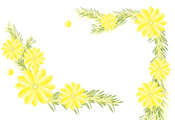 植物 花 福寿草