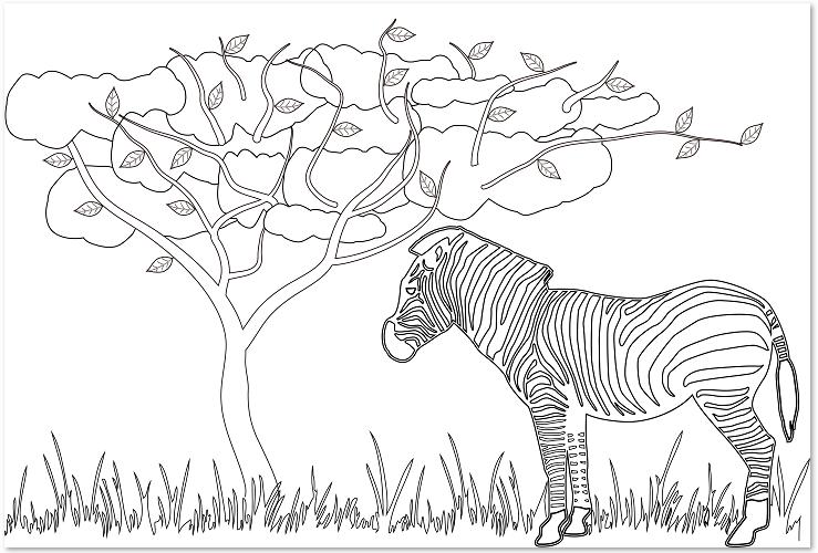 動物「しまうま」の大人の塗り絵の無料テンプレートをダウンロード