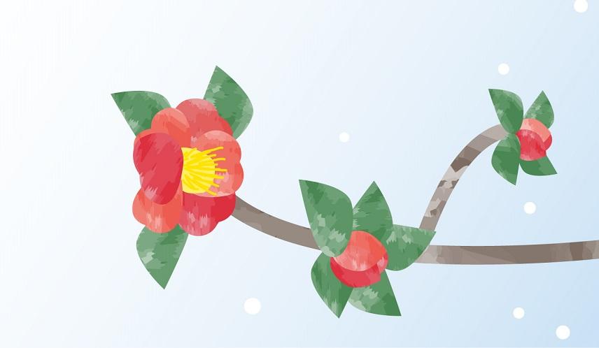2月イメージ山茶花の花のイラスト入りオシャレな無料メッセージカード