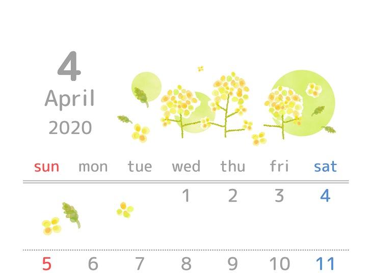 2020年4月縦型の菜の花「ナノハナ」イラスト無料カレンダー