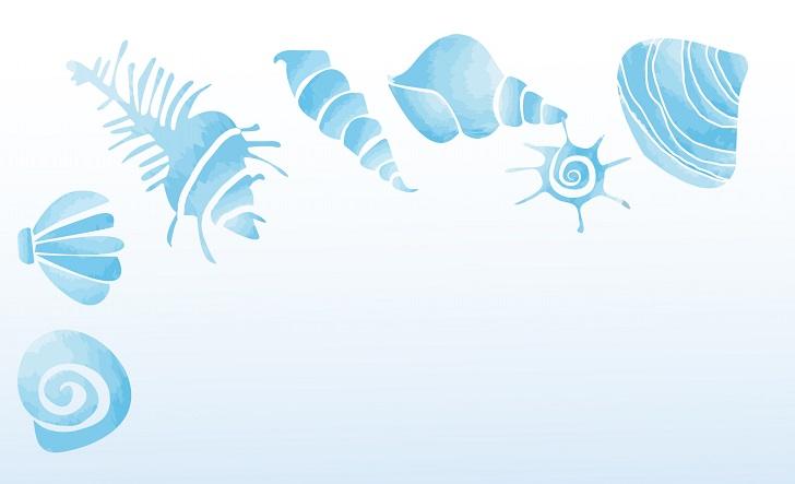 8月の残暑見舞い・暑中見舞いにオススメ貝の涼しげなメッセージカード