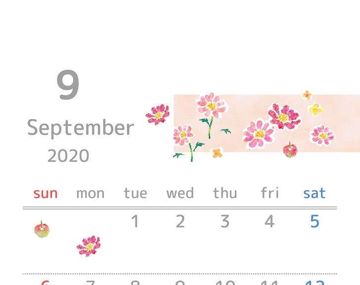2020年9月縦型の「コスモス」イラスト無料カレンダー