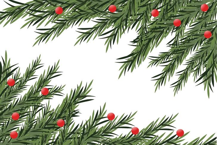 クリスマス もみの木 クリスマスツリー