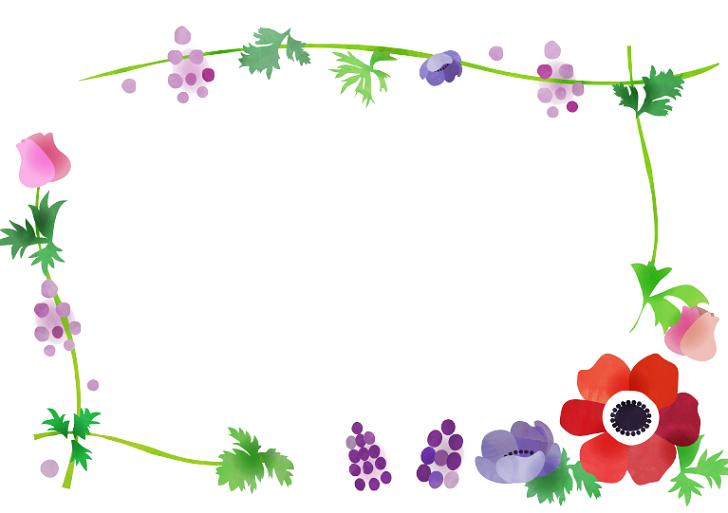 3月.4月の春おしゃれデザイン・アネモネの花のイラストフレーム素材
