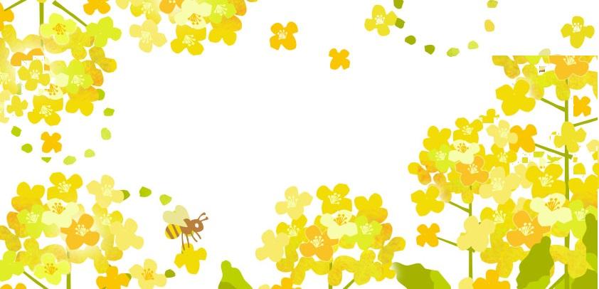 春の花・3月の花を描いた菜の花フレーム&メッセージカードのフリー素材