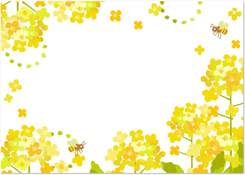 3月の花を描いた菜の花フレームをダウンロード