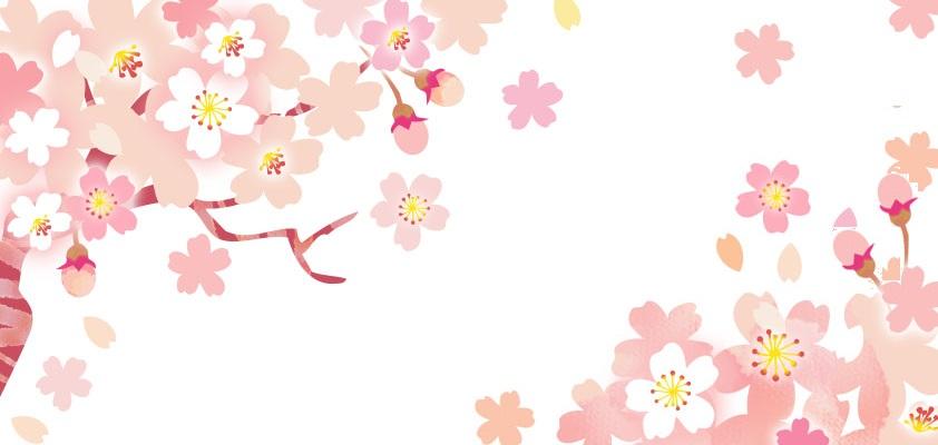 寄せ書きにA4サイズ・春の花・3.4月の花「桜」の無料イラストフレーム