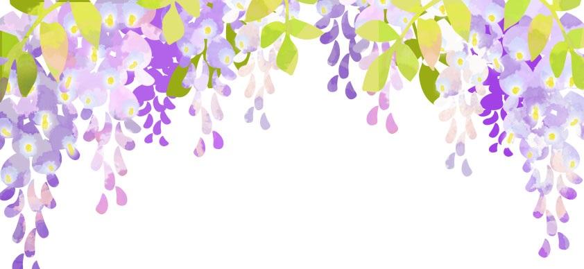 春の花・5月の花「綺麗な藤の花」のデザイン無料イラストフレーム