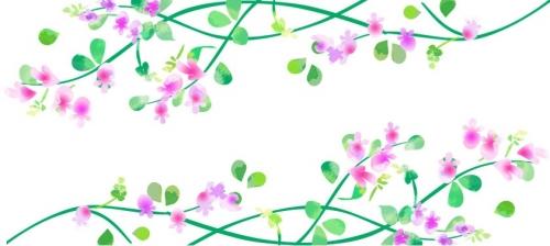 秋 萩の花
