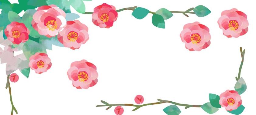 11月冬の花ピンクの「山茶花・さざんか」を描いた無料イラストフレーム素材