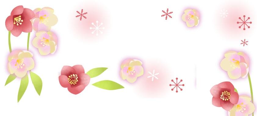 12月の冬の花「クリスマスローズ」を描いたイラスト無料フレーム素材